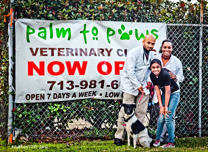 Palmtopaws Veterinary Clinic